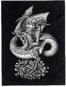 Maurits Cornelis Escher - drago