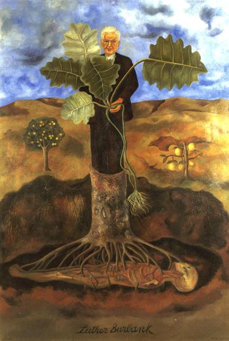 luther burbank, olio di Frida Kahlo (1907-1954, Mexico)