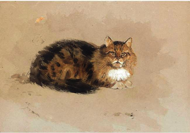 studio di a cat, acquerello di Archibald Thorburn (1860-1935, United Kingdom)