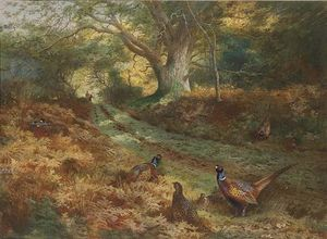 Archibald Thorburn - Il Bridle Path
