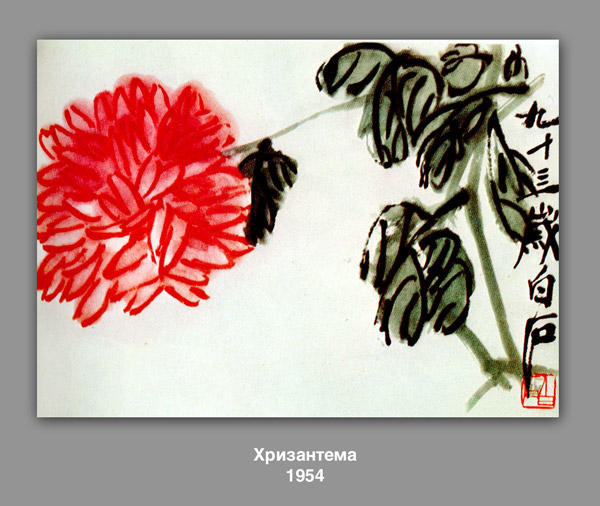 Crisantemo, 1954 di Qi Baishi (1864-1957, China)