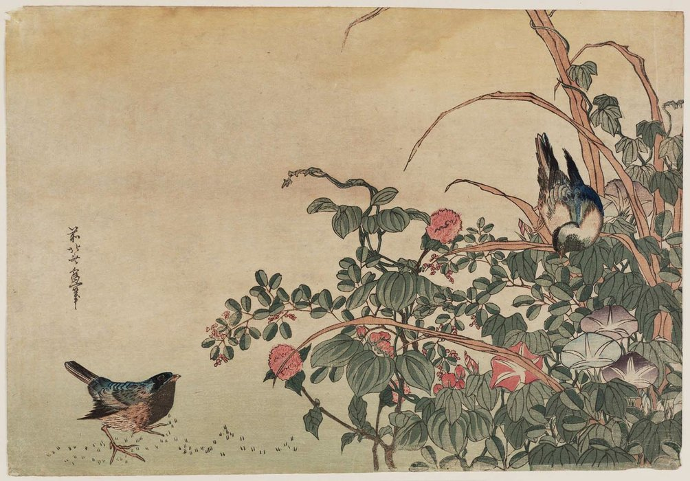 Bluebirds Con Morning Glories E Lespedeza di Katsushika Hokusai (1760-1849, Japan)