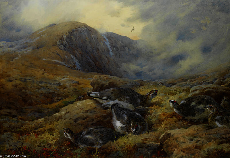 Pericolo in alto di Archibald Thorburn (1860-1935, United Kingdom)