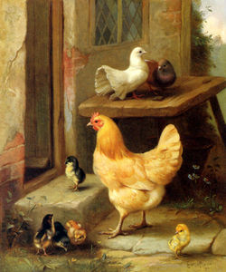 Edgar Hunt - A pulcini di gallina e piccion..