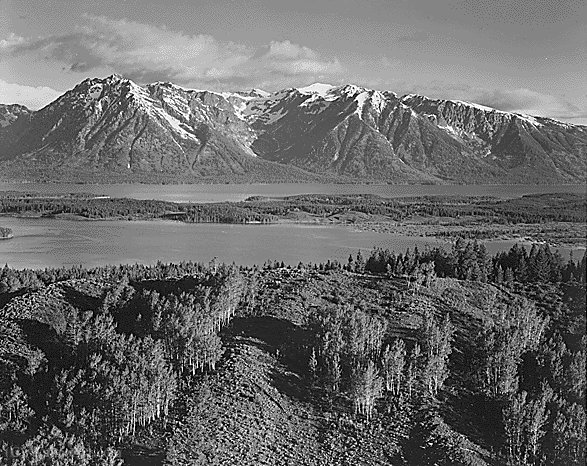 Untitled (813) di Ansel Adams (1902-1984, United States)