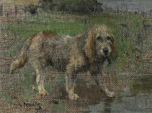 William Walls - Spaniel