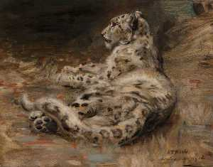 William Walls - Un Leopardo