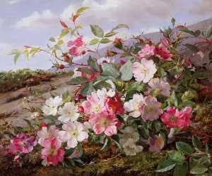 William Jabez Muckley - Eglantine